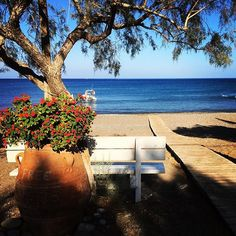 #katozakros #beach - Far East #crete Crete, Outdoor Furniture, Outdoor Decor, Beach, Instagram, Home Decor, Decoration Home, The Beach, Room Decor