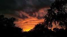 #sunsetchasers #sunrise_sunsets_aroundworld #sunset #mnsunsetchasers #mnsunsets #capturemn #thisismymn #onlyinmn #cloudporn #clouds #moodygrams #silhouette #sunset_madness by kadillakking