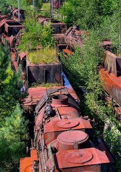 Abandoned Train Graveyard.. Brandenburg, Germany   Flickr - Photo by atomhirsch