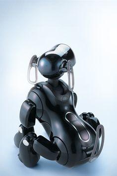 iDog robot