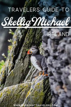 Plan your visit to the most unique place in Ireland, the Skellig Islands. Travel tips, information and planning advice for getting to Skellig Michael. Travel Articles, Travel Advice, Travel Guides, Travel Photos, Travel Tips, Travel Plan, Travel Around The World, Around The Worlds, West Coast Of Ireland