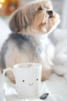 Qtique Mugs: love love love  <3  http://melinasouza.com/2015/11/20/qtique-mugs-love-love-love/  #QtiqueMugs #Mug #MelinaSouza #Spock  #Dog  #Pet