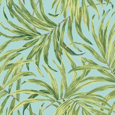 Bali Leaves Wallpaper in Green and Blue design by York Wallcoverings ($48) ❤ liked on Polyvore featuring home, home decor, wallpaper, leaves wallpaper, green pattern wallpaper, palm leaf wallpaper, leaf wallpaper and metallic wallpaper
