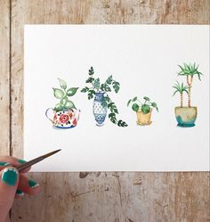 Watercolor Plants, Easy Watercolor, Watercolor Sketch, Floral Watercolor, Plant Painting, Time Painting, Plant Drawing, Watercolor Paintings For Beginners, Watercolor Art Lessons