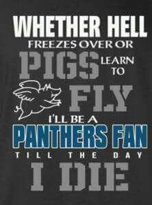 Carolina Panthers Wallpaper, Carolina Panthers Shirt, Sport Football, Panther Football, Nc Panthers, Panther Nation, Sports Team Logos, Auburn Tigers, Carolina Blue
