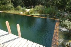 How To Make a DIY Natural Swimming Pool Click through the picture to take you to a video on Natural swimming pools....