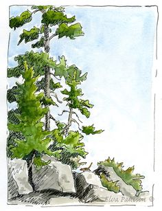 Elva Paulson,  Sketching in Nature: Yellowstone Sketches