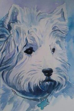 Westie watercolor Tina Caramellino 2015