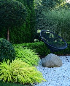 Gardening – Gardening Ideas, Tips & Techniques Garden Ideas Nz, Garden Inspiration, Back Gardens, Outdoor Gardens, Mediterranean Garden, Garden Landscape Design, Ornamental Grasses, Shade Garden, Dream Garden