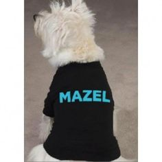 Mazel Dog Shirt... Getting him this!