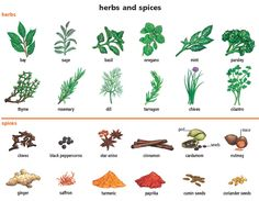 A herb is specifically from the leaf of a plant, and a spice is from the seed, berry, stem, bark, root or bulb.