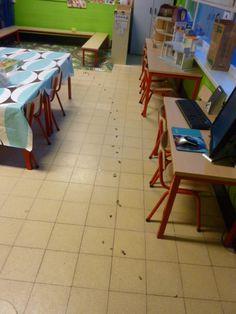 kiezelsteentjes in de klas Reggio Emilia, Restaurant, Diner Restaurant, Restaurants, Dining