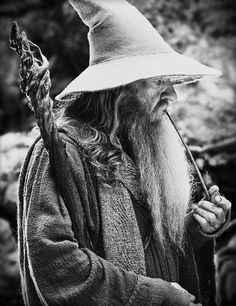 Gandalf- Disturber of the Peace