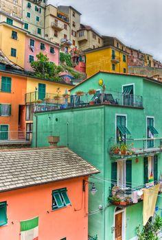 Manarola, Cinque Terre,  Province of La Spezia , Liguria region Italy