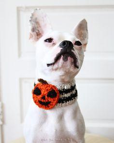 Custom Jack-O-Lantern Dog Neck Warmer  Dog by AllYouNeedIsPugShop
