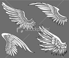 open angel wing - Google Search