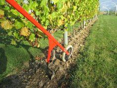 le-desherbage-mecanique-dans-la-vigne
