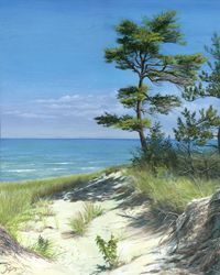Pinery Provincial Park  - the dunes   Camped here as a kid and it's forever in my heart.