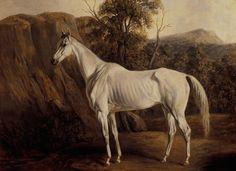 """White House Horses"" | White House History"