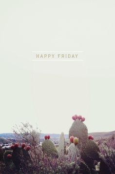 I wish everyday could be Friday