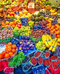 Coat Of Many Colors, All The Colors, Vibrant Colors, Colours, Rainbow Art, Rainbow Colors, Rainbow Palette, Rainbow Food, World Of Color