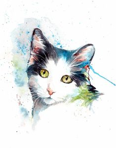 White and grey cat painting original watercolour by ChristyObalek