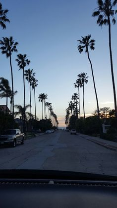 tree-lined street in san diego, CA - Nadine Sojka - Nature travel Summer Wallpaper, Wallpaper S, Wallpaper Quotes, Aesthetic Iphone Wallpaper, Aesthetic Wallpapers, Phone Backgrounds, Wallpaper Backgrounds, Cool Pictures, Beautiful Pictures