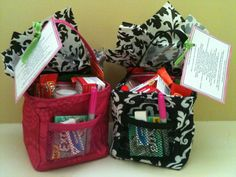 Thirty One Little Carry All... Teacher Survival Guide