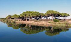 Sardinien beim Stellplatz Osalla Beach Garden