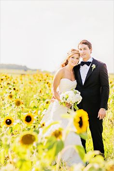 picture in a field of sunflowers. so pretty!