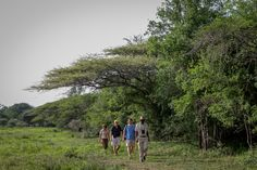 Hiking with Chubeka Trails - Swaziland Paths, Trail, Southern, Hiking, Country Roads, African, Adventure, Pictures, Walks