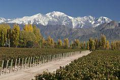 O Que Fazer Em Mendoza #viagem #viajar