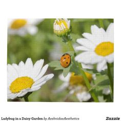 Ladybug in a Daisy Garden Puzzle