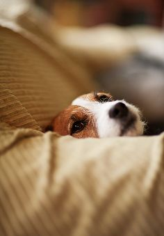 I'm warming your spot..