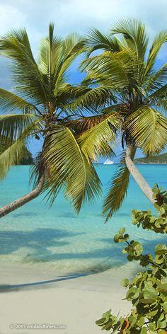 Maho Bay, Saint John, US Virgin Islands