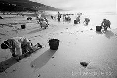 #barbaradicretico #Photography #aboutphotography #prestige #nuncamais #petroleo