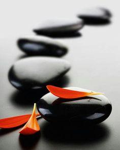 Zen . Stones . Flower Petals