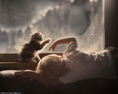 A boy and his cat create drawings on a misty window in the selection of pictures that show...