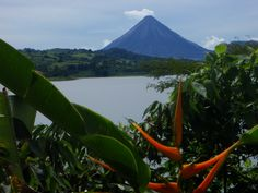 Hiking, canyoning waterfall rappelling & hot springs are just a few of the attractions in and around Arenal Volcano National Park, Costa Rica Monteverde, Tamarindo, Volcano National Park, National Parks, Great Wide Open, Costa Rica Travel, Natural Wonders, Hot Springs, Rafting