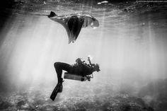 black and white photography - Google zoeken