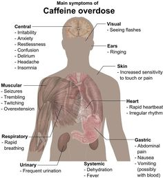 Did you know that Caffeine has some harmful side effects. Take a look here at just a few of those side effects. Ganoderma coffee does not have these side effects. Barista, Caffeine Effects, Health And Wellness, Health Tips, Mental Health, Health Facts, Health Chart, Health Articles, Health Education