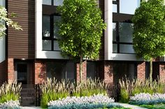 Another exterior rendering of the ultra luxurious Westside Vancouver homes for sale at Blanc Modern by Airey Group.