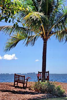 The Kampong on Biscayne Bay, Coconut Grove (Miami, Florida)