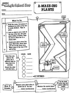 magic school bus goes cellular worksheet pdf