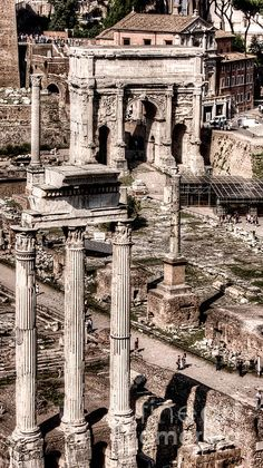 Corinthian order. The Temple of Castor and Pollux at the Forum from the Palatine - Weston Westmoreland