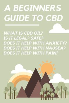 Basic guide to CBD. What is CBD oil? Does CBD oil help with anxiety, pain, nausea and other illness? Is CBD legal? Is CBD safe? Quick Beginner Guide to CBD! Medical Cannabis, Cannabis Oil, Cannabis Edibles, Cdb Oil, How To Help Nausea, Endocannabinoid System, Stress, Understanding Anxiety, Cbd Hemp Oil