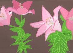 季節の花。ゆり2。2018/6/14