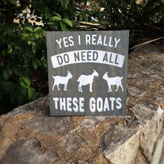 Goat Gifts, Country Decor - Wood How to Crafts Farm Signs, Wood Signs, Goat Playground, Cute Goats, Funny Goats, Mini Goats, Goat Pen, Show Goats, Goat Gifts