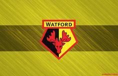 Watford wallpaper.