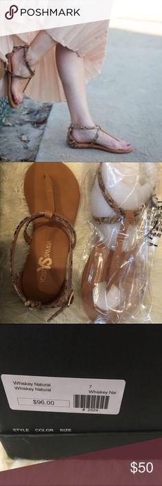 🌟SALE🌟🆕Yosi Samra Sandals New in box. --  PRICE IS FIRM -- retail 90$ + Yosi Samra Shoes Sandals